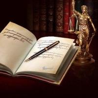 Услуги юристов для организаций