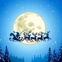 Омская мэрия купит на Новый год оленей за 335 тыс руб