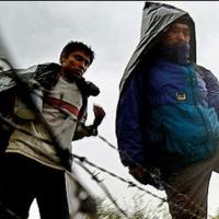Четырех омичей осудили за переправку мигрантов через границу