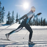 За Кубок мэра Омска лыжники будут соревноваться на трассе в Крутой Горке