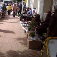 Садоводам и огородникам выделяют места на омских рынках за 10 рублей в сутки