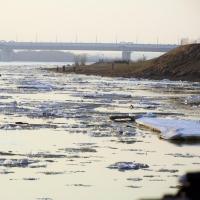 Омичи наблюдают ледоход (фото)