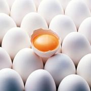 """При проверке в """"Оше"""" уничтожили тонну яиц"""