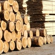 В Омской области реализуют совместный российско-германский проект по лесопереработке