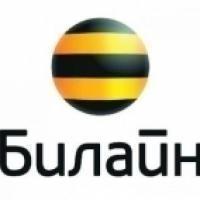 """""""Билайн"""" представляет идеальную новогоднюю пару!"""