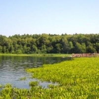 Омичи убрали мусор на озере Линево
