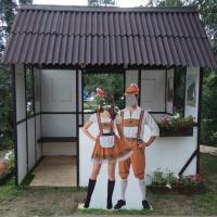 Вандалы в Омске растаскивают композиции с «Флоры»