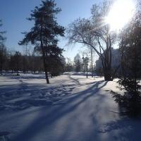 В Омской области сохранятся морозные ночи