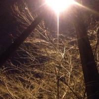 Городская власть сможет сделать Омск светлее через 20 лет
