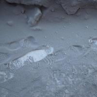 В Минприроды объяснили черный снег в Омске погодой