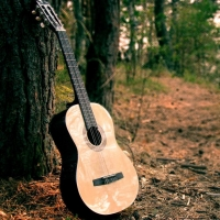 В Омске из дачного домика похитили гитару и квадрокоптер