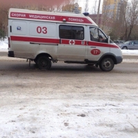 В Омской области автоледи с мужем и сыном угодила в кювет