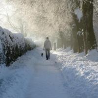 В Омске бездомный мужчина пытался изнасиловать девушек на морозе