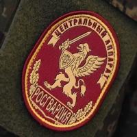 В Омске Росгвардия задержала бившегося в судорогах водителя