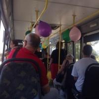 Омские школьники прочтут стихи классиков прямо в автобусах