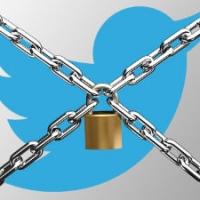 Twitter ввёл санкции против депутата Милонова