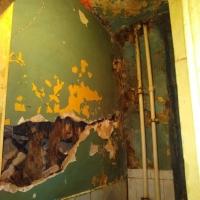 Омичка пожаловалась на ужасное состояние общежития на 5-й Кордной