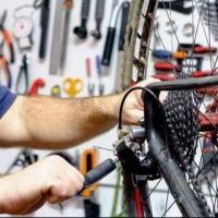 Велосипед – самый надежный и экологически чистый вид транспорта