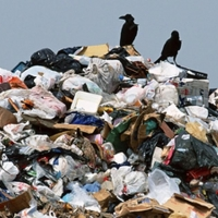 Тариф на вывоз мусора в Омской области озвучат не раньше 18 марта