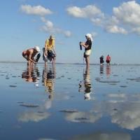 Новая экотропа на озере Эбейты готова принять омичей