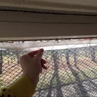 В омской школе, где должны были поменять окна, стекла держатся на скотче