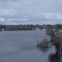 В Омске затопило 94 дачных участка