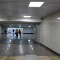 Музею Врубеля дали 15 млн рублей для организации выставок в омском метро