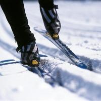 Омских чиновников поставят на лыжи