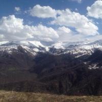 Погибшего в Чечне бойца Росгвардии похоронят в Омской области