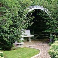 Хорошо организованный сад покорит любого