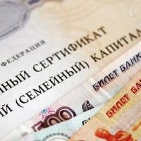 Банда омичей похитила полсотни миллионов рублей путем махинаций с маткапиталом