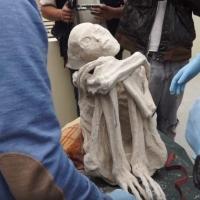В Перу обнаружены останки пришельца