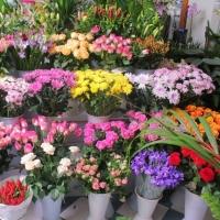 Что потребуется для организации магазина по продаже цветов