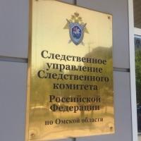 В Омске, после обнаружения тела младенца в гаражах, завели уголовное дело