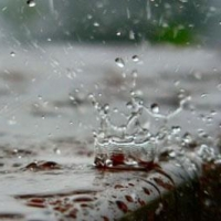 Омичей ждет теплая, но дождливая и пасмурная неделя
