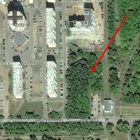 В Омске вырубают сквер возле проходной «ПО Полет»