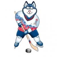 Что интересно можно ждать от ЧМ по хоккею 2016
