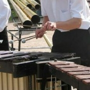 Омич-ксилофонист стал лауреатом австрийского конкурса
