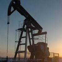 На севере Омской области начнут искать нефть