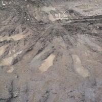 Омичи не хотят ходить по грязи и слякоти