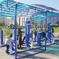 Французская компания построит в Омске спортплощадку