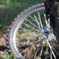 В Омске 11-летний велосипедист после ДТП не смог вспомнить свой адрес
