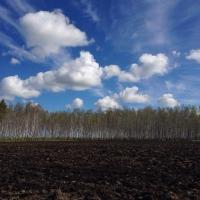 Аграрии Омской области запасли почти 9 тысяч тонн минеральных удобрений