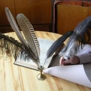Вузы наточат перья