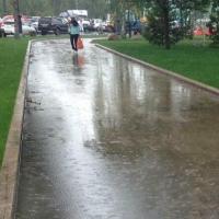 Лето в Омской области начнется с дождей, гроз и порывистого ветра