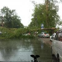 Омичи фотографируют последствия урагана в Омске