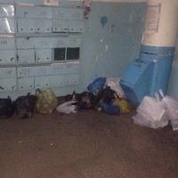 Китайская компания готова профинансировать создание объекта для утилизации отходов в Омской области