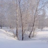 Зима в Омской области начнется с комфортной погоды днем