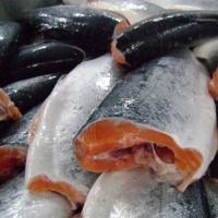 В Омской области уничтожат 550 кг свежемороженой семги