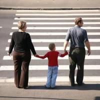 Организация безопасности движения пешеходов и автотранспорта